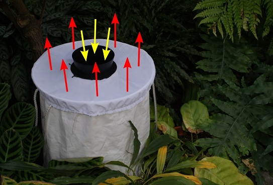 BG-Sentimel mosquito monitoring trap with air currents