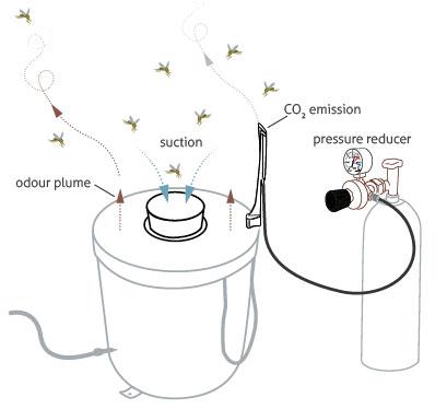 Adding carbon dioxide to the BG-Sentinel